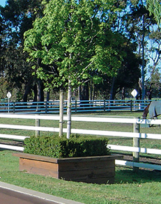 Horserail fencing is available in Australia and is tough, durable and safe for horses.